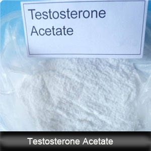 Testosterone species undecanoate cycle and the purpose of this steroid